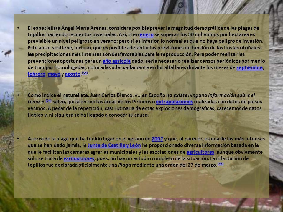 El especialista Ángel María Arenaz, considera posible prever la magnitud demográfica de las plagas de topillos haciendo recuentos invernales. Así, si en enero se superan los 50 individuos por hectárea es previsible un nivel peligroso en verano; pero si es inferior, lo normal es que no haya peligro de invasión. Este autor sostiene, incluso, que es posible adelantar las previsiones en función de las lluvias otoñales: las precipitaciones más intensas son desfavorables para la reproducción. Para poder realizar las prevenciones oportunas para un año agrícola dado, sería necesario realizar censos periódicos por medio de trampas homologadas, colocadas adecuadamente en los alfalfares durante los meses de septiembre, febrero, mayo y agosto.[33]